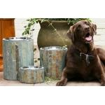 Aspen Dog Feeder